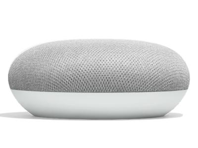 Google Smart Speaker With Built in Google Assistant In Chalk - Home Mini (Chalk)